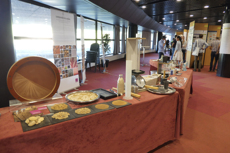 Atelier amàco au congrès Powders and Grains 2017