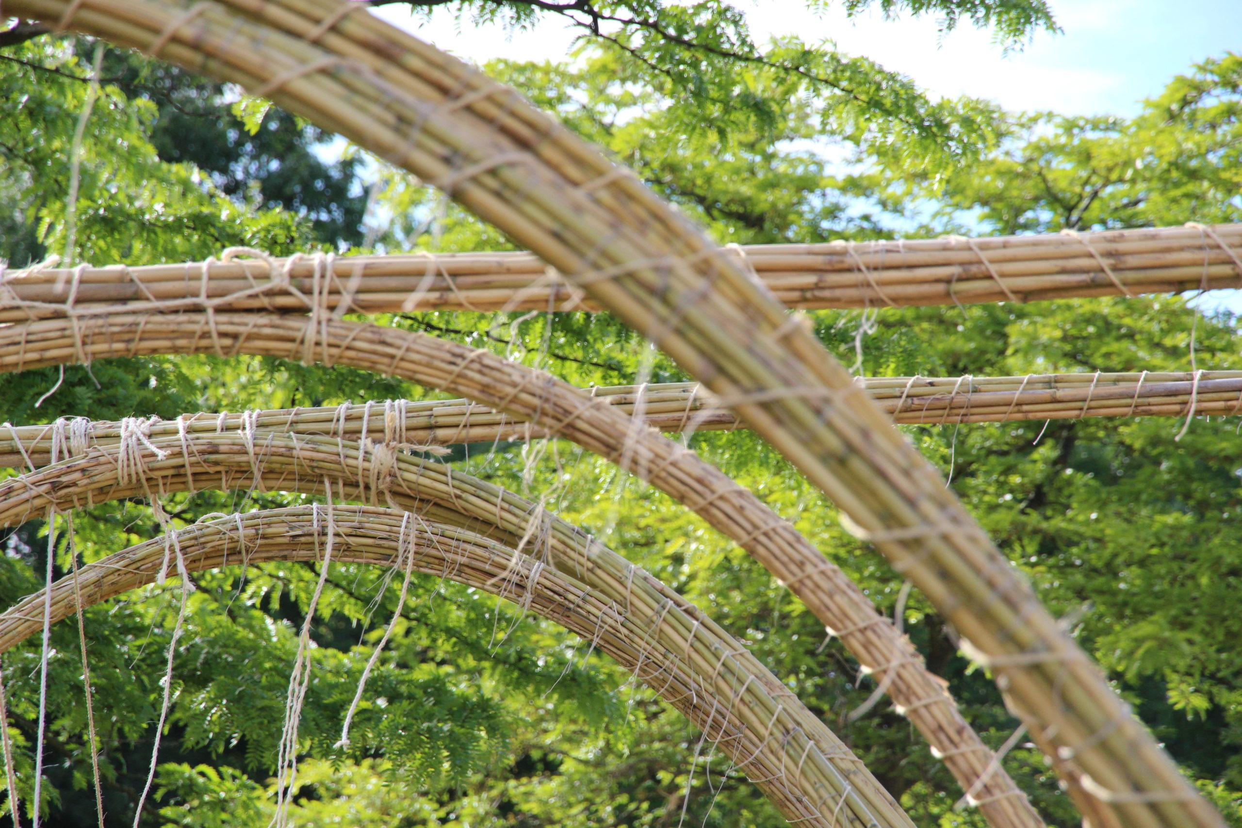 Atelier Fibres : les fibres naturelles dans la construction